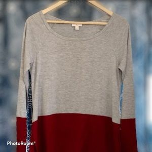 Charming Charlie Color Blocked Tunic Top